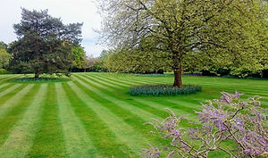 Lawn Mowing Lines