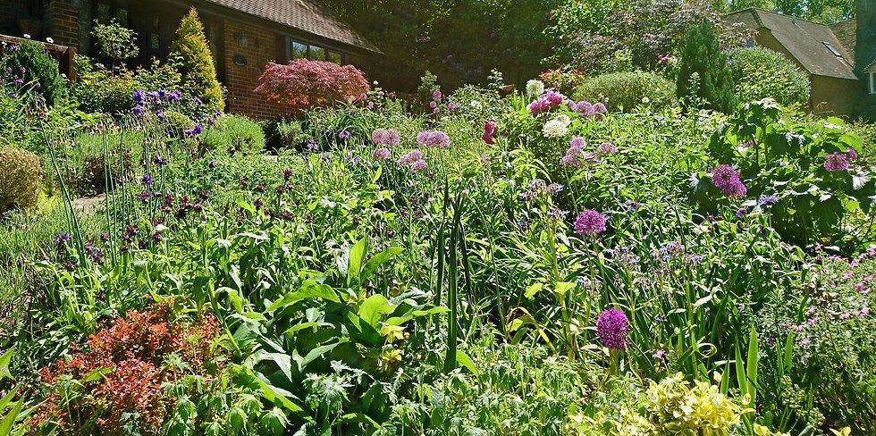 Planting Beaconsfield