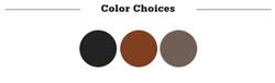 Evolutions Builder Color Choices