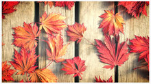Fall in Love with your Deck Again