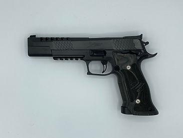 SigSauer P226 X-Six.JPG
