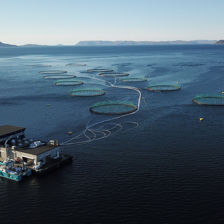 HPS hjelper Cermaq redusere CO2-utslipp