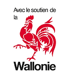 wallonnie.ok.PNG