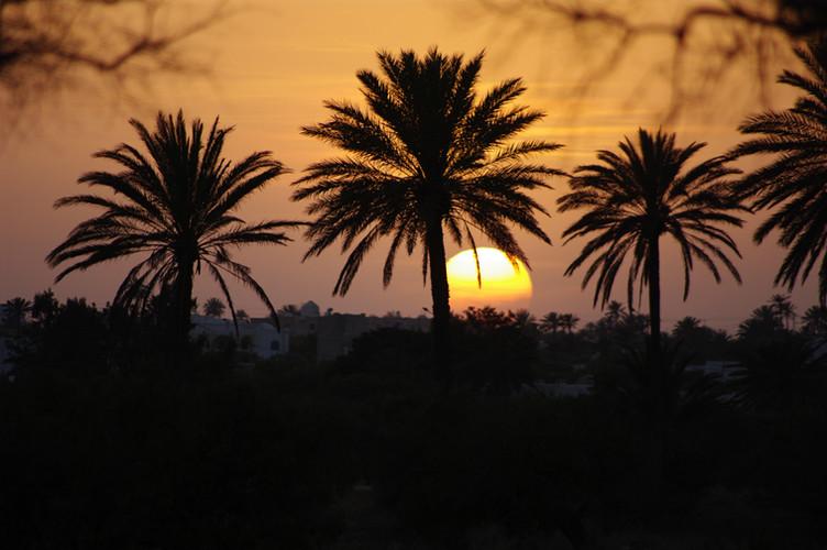 Belvedere Sunset