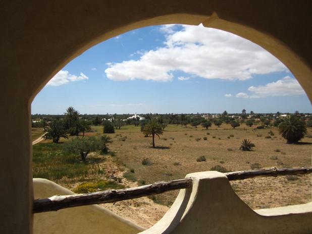 Belvedere View