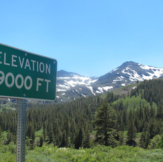 Sonora Pass Elevation Sign