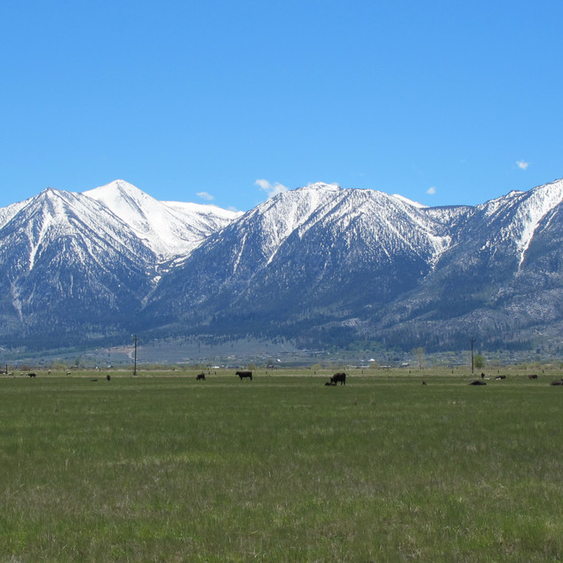 Jobs Peak and the Sierra