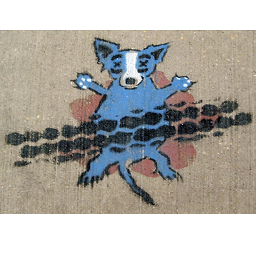 Blue Dog Squash