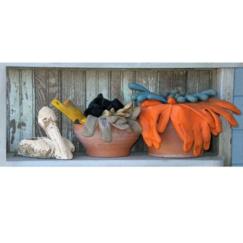 Pelican Shelf