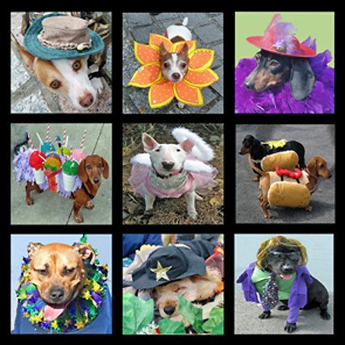 Barkus Parade Pups