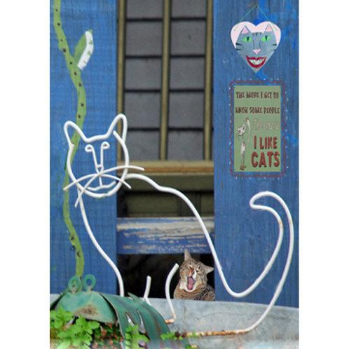 Blue Kat House