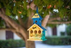 birdhouse - 112516-2506.jpg
