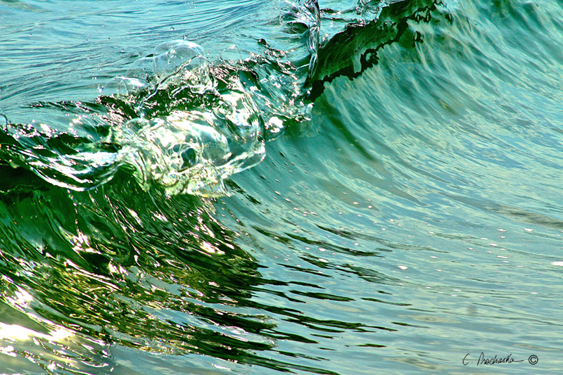 Wave Form and Theory WM00065