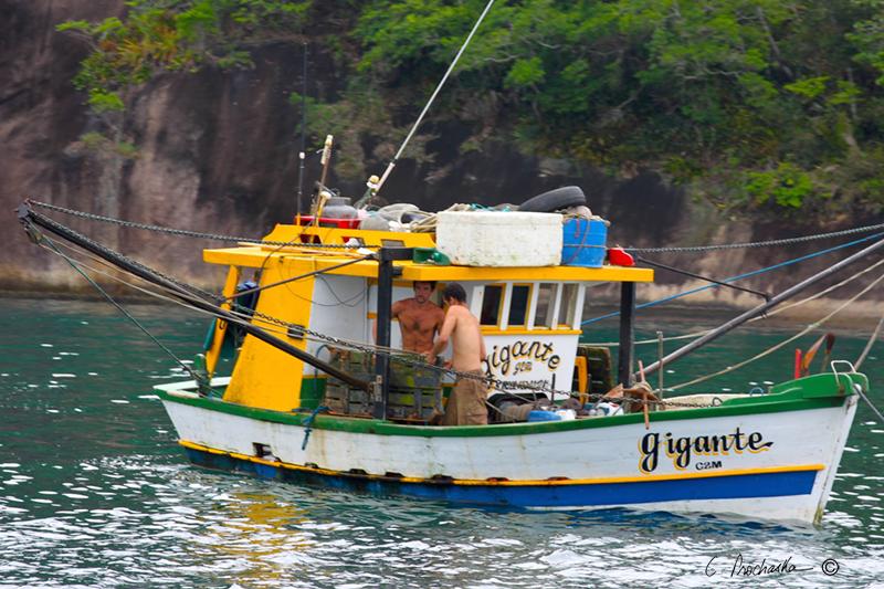 Gigante Boom Trawler  BG00105