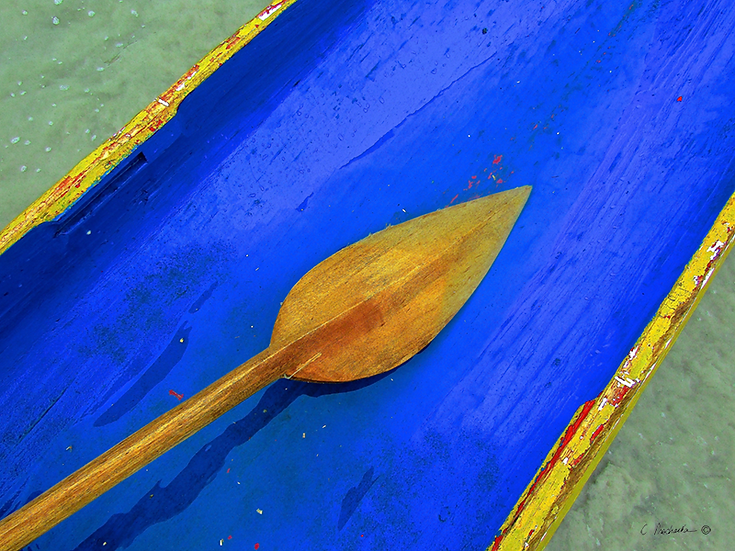 Sharp New Wood Paddle CP00724