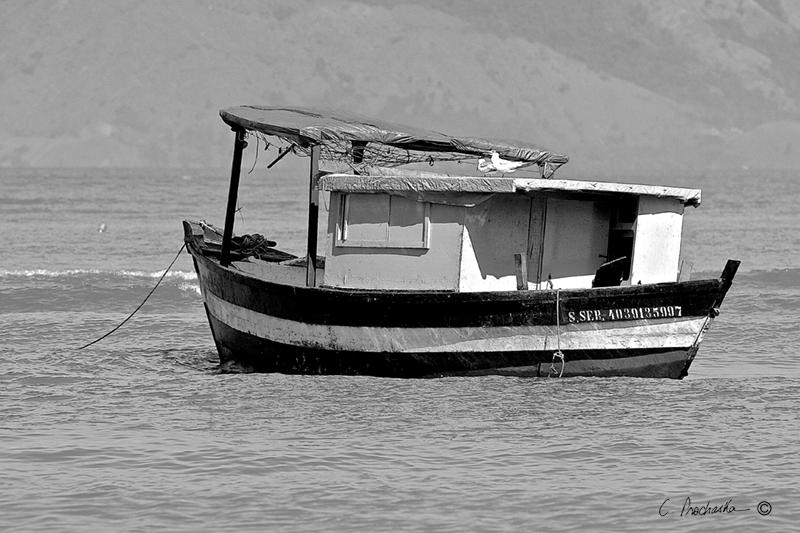 Grey Black Ghost Ship BW00102