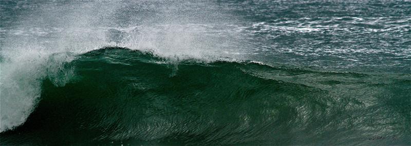 Nice Tidy Little Wave WM00064