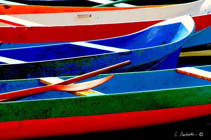 Canoe Row and Paddle CP00022