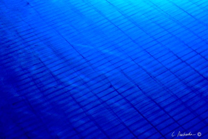 Blue Pool Grid Iron  WM00023