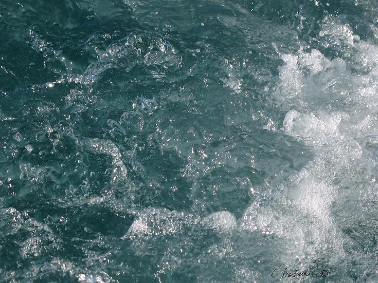 Calm Water in Adjutaion WM00045