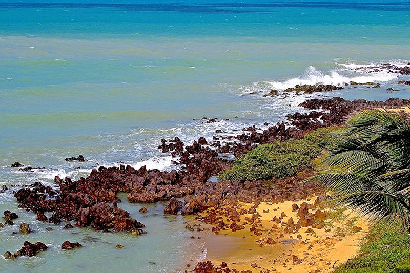 Rocky Lava Tidal Shore  SS00039
