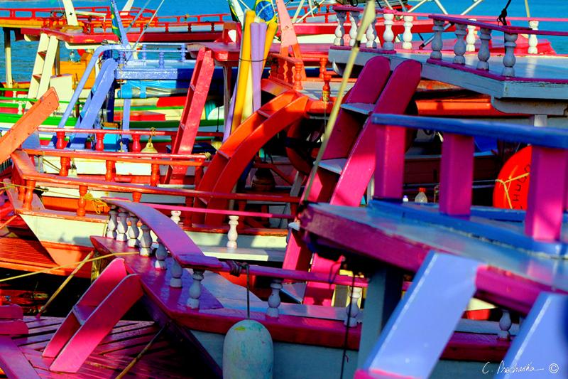 Party Boats are Ready  BG00532