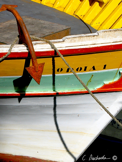 Bristol Painted Bow BG00088