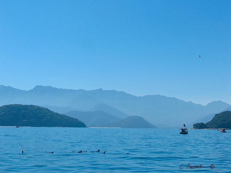 Blue Sky; Blue Sea SS00029