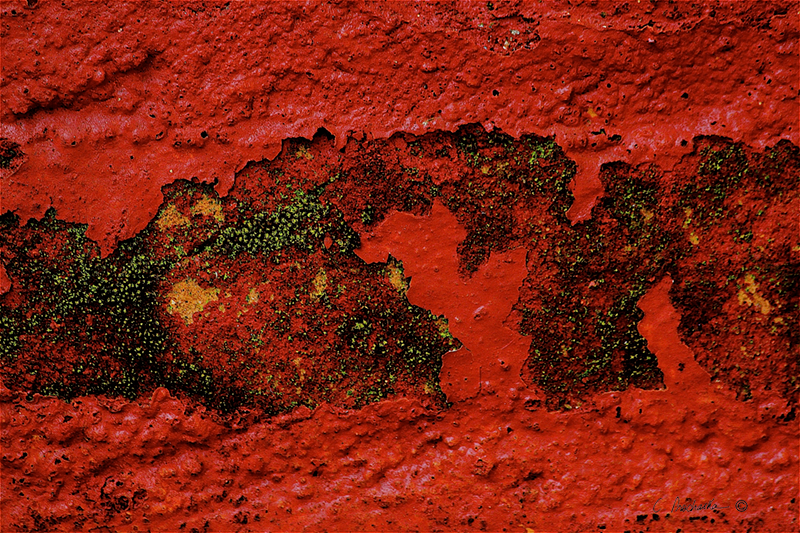Red'n Green Developing   CA00095
