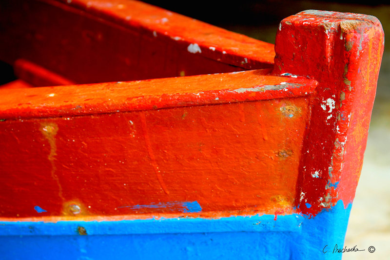 Orange, Blue Bow  CA00129
