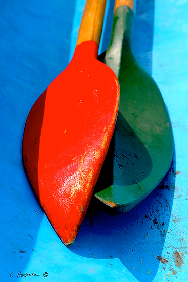Red Green with Sky Blue CP00055