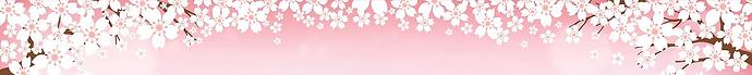 image banniere sakura.png