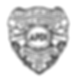 Union Badge 613.png