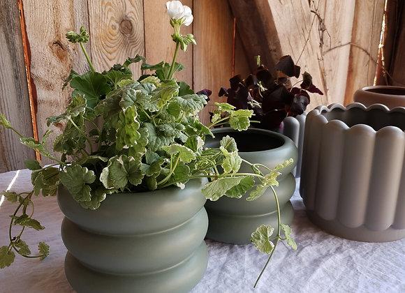 Blomkruka grön Medium