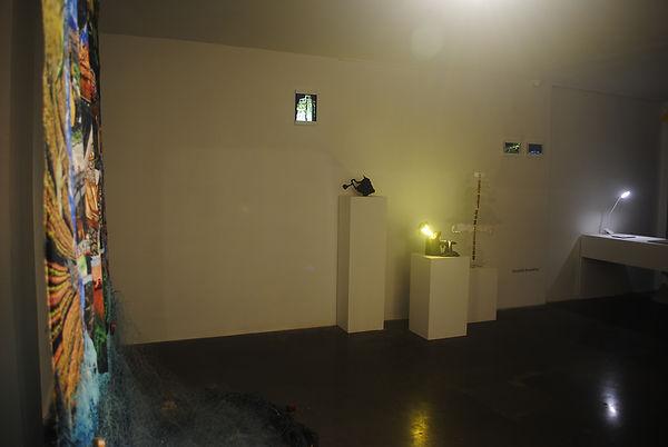 Installation view 2.JPG