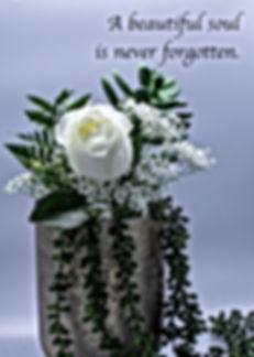 White Rose in Vase w Succulents.jpg