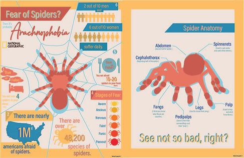 SpiderSpread2.jpg