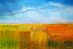 Field Of Stillness
