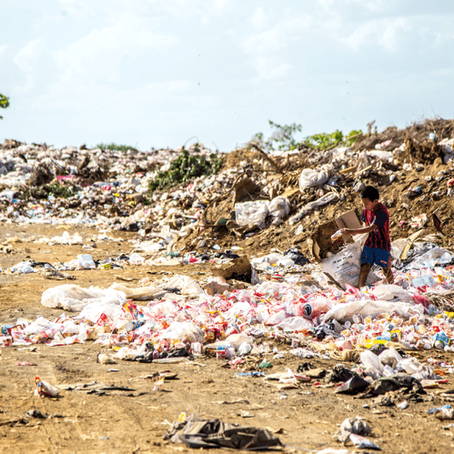 What is Solid Waste Management? What are the effects of poor solid waste management?