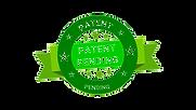 patent pending-wbg.png