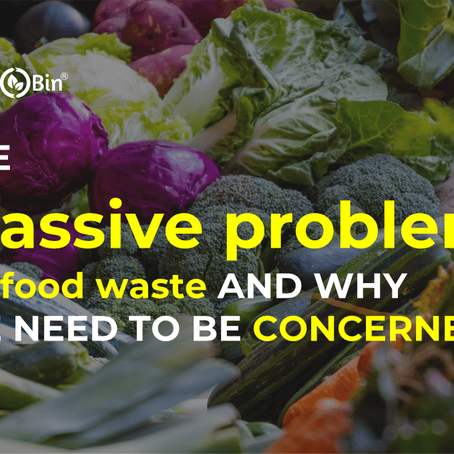 The Massive Problem of Food Waste and why we need to be concerned!