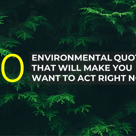 Earth Day: 20 Environmental Quotes that will make you want to act right now!