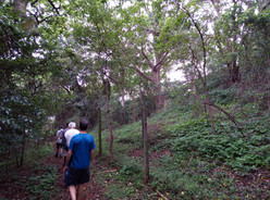 Hike Pigeon Valley