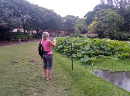 Beside the Lake @ The Durban Botanic Gardens