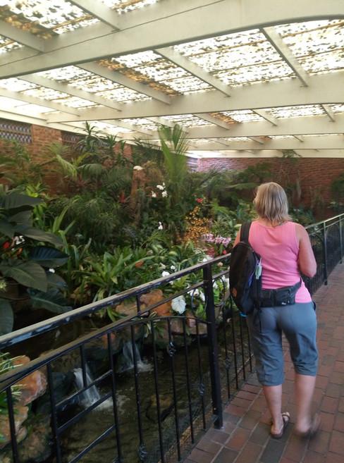 Walking through the Orchard House @ The Durban Botanic Gardens