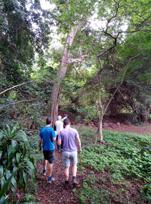 Hiking Pigeon Valley