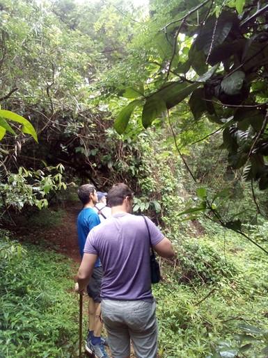 Treking through Pigeon Valley Nature Reserve