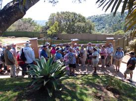Group Tours at Phezulu Reptile Park