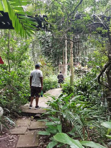 Walking through Amazulu Sculpture Gardens