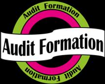 logo-audit.png